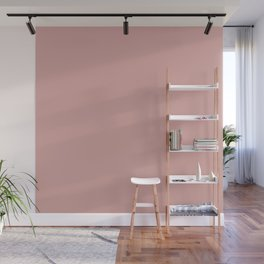 Rose Blush D9A6A1 Wall Mural