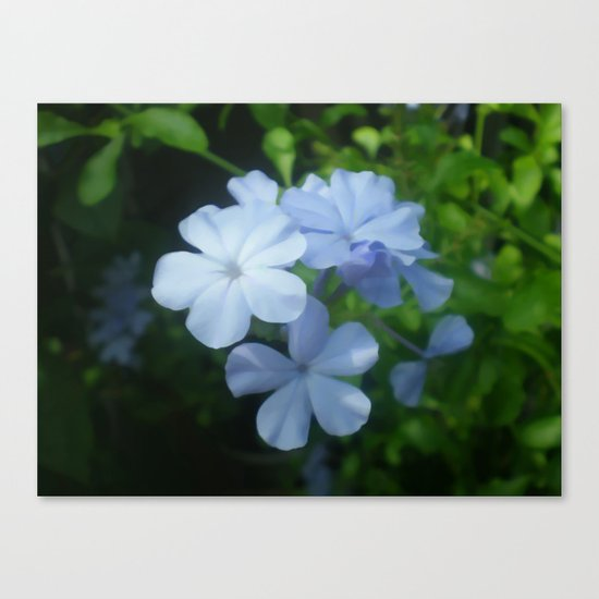 Blue is for Beautiful  Canvas Print