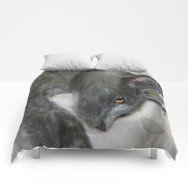 Close Up Portrait Of A Relaxed Grey Cat  Comforters