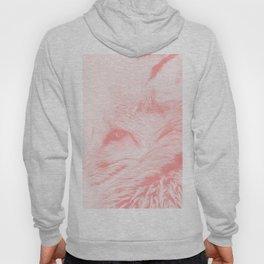 red fox digital acryl painting acrpw Hoody