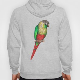 Conure with a heart on its belly Hoody