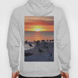 Shore Birds Hoody