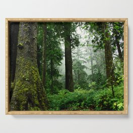 Light Fog in the Dense Forest Serving Tray