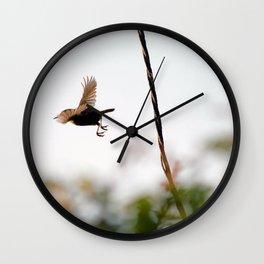 Wren Songbird Bird on Rusty Wire (Troglodytes) Wall Clock