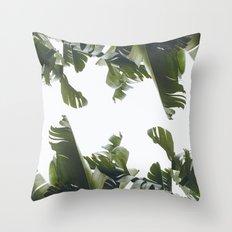 Birds of California Throw Pillow