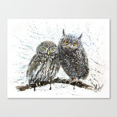 little owl's Canvas Print