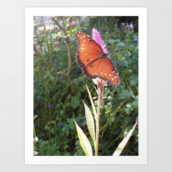 Spread My Wings Art Print