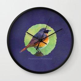 Phoenicurus Phoenicurus Wall Clock