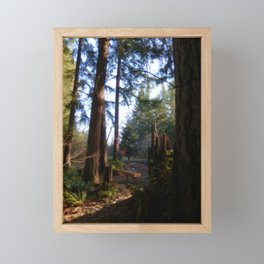 Maple Valley, Washington 2 Framed Mini Art Print