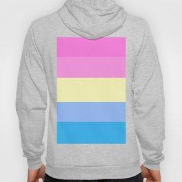 Pastel Pansexual Pride Hoody