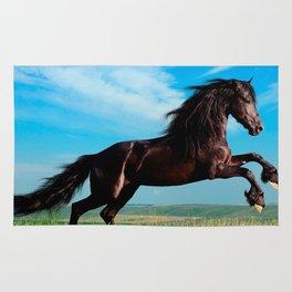 black and wild Stallion Rearing Horse Rug