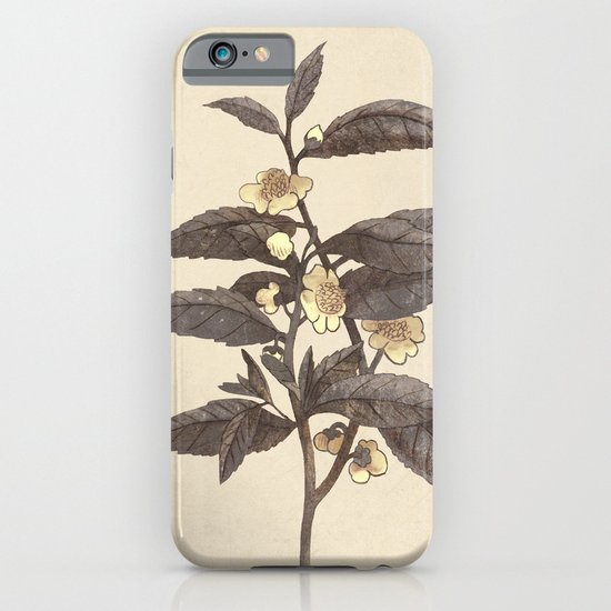 Late Bloom  iPhone & iPod Case
