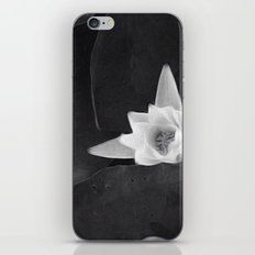 lilly black and white iPhone & iPod Skin