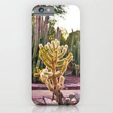 Desert Botanical Gardens  iPhone 6s Slim Case