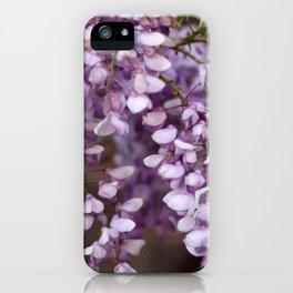 Spring - Wisteria iPhone Case
