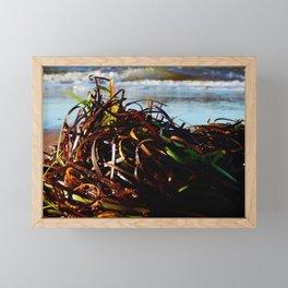 Sea Grass on the Beach Framed Mini Art Print