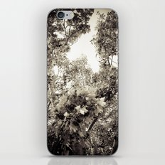 the tree of love iPhone & iPod Skin