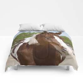 Sonny Comforters