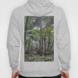 The Sierra Palm cloud forest - El Yunque rainforest PR Hoody