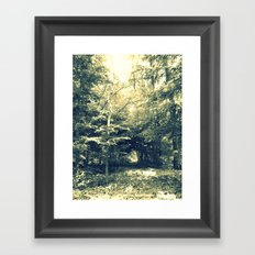 Enter Into Magic Framed Art Print