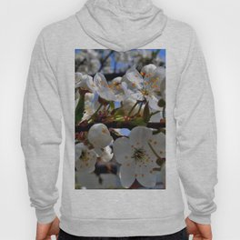 Flowering tree Hoody