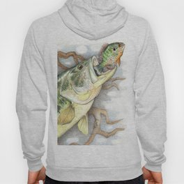 Bass and Pumpkin Seed Hoody