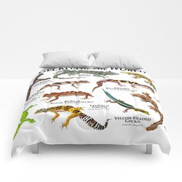 Geckos of the World Comforters