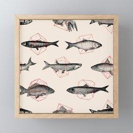 Fishes In Geometrics (Red) Framed Mini Art Print