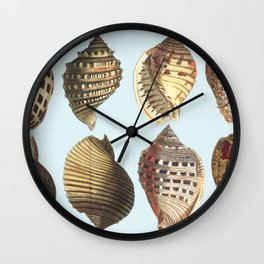 shell sea Wall Clock