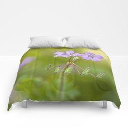 Purple wildflowers Erodium malacoides Comforters