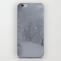 Winterwonderland Germany iPhone & iPod Skin