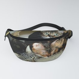 Three Close For Comfort Fanny Pack