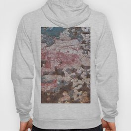 Cracking Paint and Rust Abstract Hoody