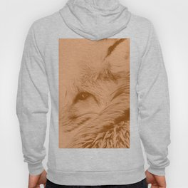 red fox digital acryl painting acrcb Hoody