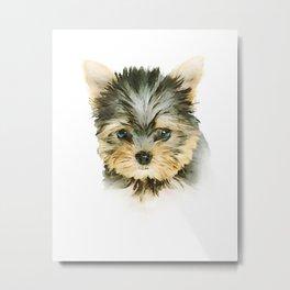 Cute Yorkshire Terrier Puppy Metal Print