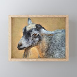 Goat Framed Mini Art Print