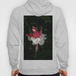 June Fuchsia Hoody
