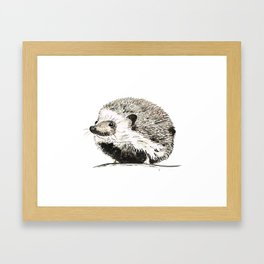 Hedgehog watercolour and ink Framed Art Print