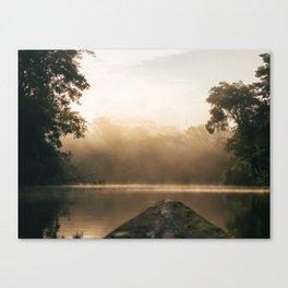 Amazonas view Canvas Print
