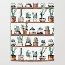 Cactus Shelf Rose Gold Green Poster