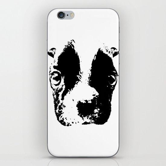 Curious French Bulldog iPhone & iPod Skin