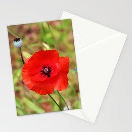 Vivid Red Poppy Stationery Cards