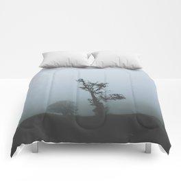 Black Forest Solitude Comforters