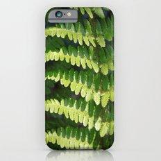 Fern iPhone 6s Slim Case