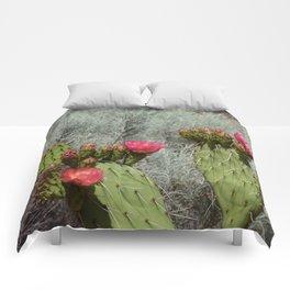 Cacti in Bloom - 3 Comforters