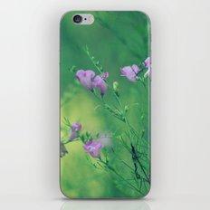 Beautiful Mess iPhone & iPod Skin
