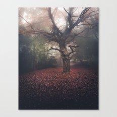 Gentle November Canvas Print
