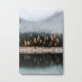 Forest Photography Metal Print