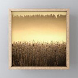 Bed Of Reeds In Golden Hour Framed Mini Art Print