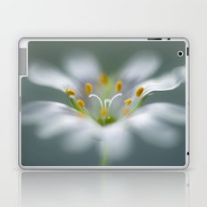 Stitchwort Laptop & iPad Skin